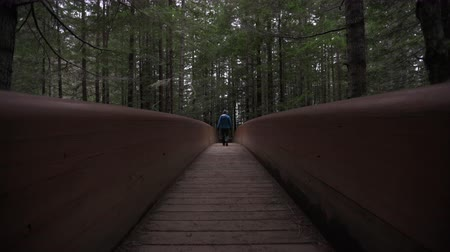 Man in Warm Clothes Crosses Wooden Bridge Away From Camera