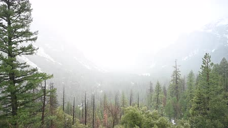 Rain Falls into Yosemite Valley From Tunnel View Overlook Стоковые видеозаписи
