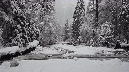 Snow Falls Over Creek and Lower Yosemite Falls during winter storm