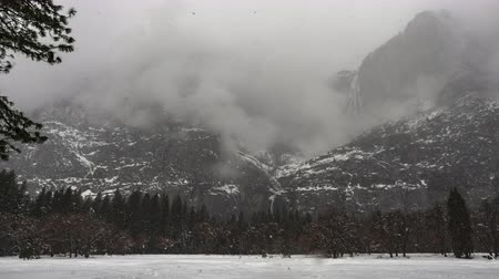 Time Lapse of Yosemite Open Field With Snow During Winter Storm Стоковые видеозаписи