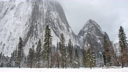 Time Lapse of Yosemite Valley Trees and Rock Face on snowy and foggy day