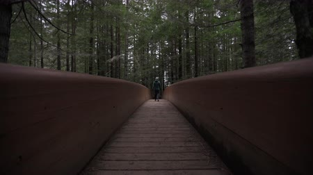 Woman in Warm Clothes Crosses Wooden Bridge Away From Camera