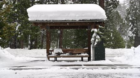 benches : Snow Covered Bus Stop with snow falling during blizzard