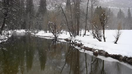 Snow Falls on Calm Merced River in Yosemite Valley Стоковые видеозаписи