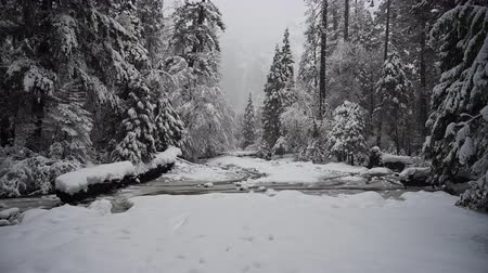 Snow Falls on Frozen Creek and Lower Yosemite Falls During Winter Storm Стоковые видеозаписи