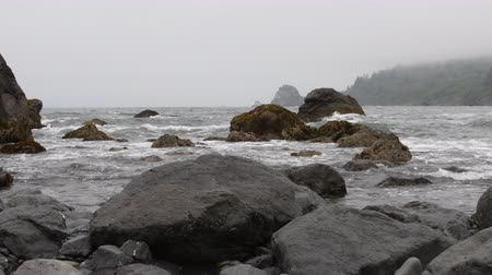 Pan across foggy Northern California coast as the tide rolls In around the rocks. Стоковые видеозаписи