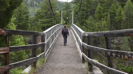 Woman Crosses Suspension Bridge in Yellowstone Wilderness Стоковые видеозаписи