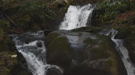 Husky Branch Falls Upper Cascade Stockvideo