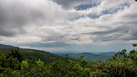 bald mountain : Below Jane Bald Rocks on cloudy summer day Stock Footage