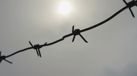boundary : barbed wire on a gray sky background Stock Footage