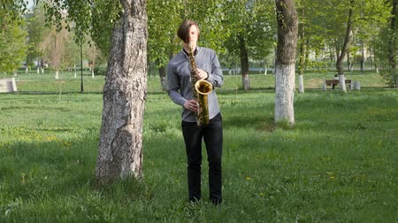 saxofon : young man plays the saxophone. man is standing on the green grass and walking among the birches. Dostupné videozáznamy