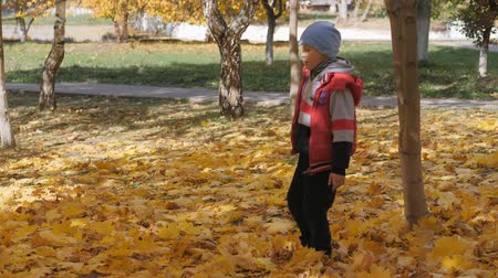 lista : Autumn. Small children in the yellow leaves. Children play in the street with fallen leaves. Autumn grove of birches and maples. Happy kids on the street. boy walks through fallen autumn foliage. child kicks autumn leaves that fly high up. slow motion