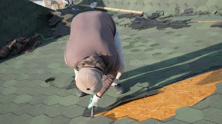 müteahhit : Dismantling the soft roof. French green tile. Roofer working on a sloping roof. A man with a beard tears off an old roofing material from a wooden slab with the help of a crowbar. Construction work at height. Stok Video