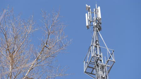 base station : Cell tower against the blue sky. Leafless shrub branches.