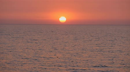 escarlate : Red sunset in the sea. Stock Footage