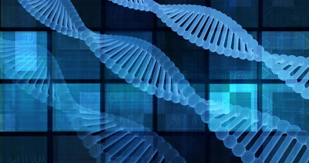 cellular structure : Genetic Research and Development with Looping Science Data Stock Footage