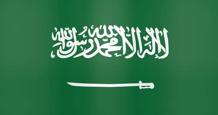 gradual : Waving Flag of Saudi Arabia Looping Background Stock Footage