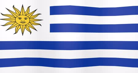 Waving Flag of Uruguay Looping Background