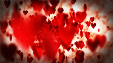 zakochani : red hearts flying on white background Wideo