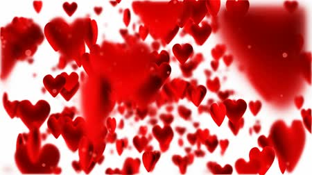 red hearts flying on white background Filmati Stock