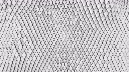 undulating : A lot of white rhombuses on the surface of the whole screen, volumetric wave-like movement of rhombs densely adjacent to each other, slow motion 4K abstract background