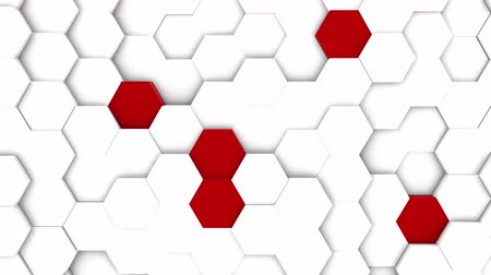 rhombic : abstract polygonal geometric surface, white minimal polygonal grid pattern with some color elements, random waving motion background in pure architectural wall with white design space Stock Footage