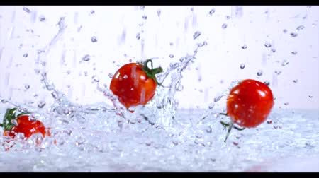 cherry domates : Falling and splashing cherry tomatoes on water.