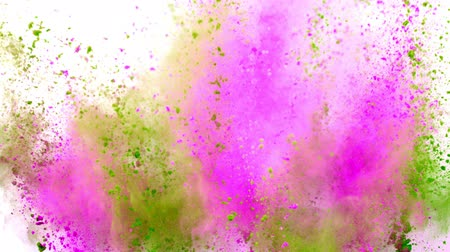 pirotecnia : Colorful powder exploding on white background in super slow motion.