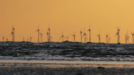 baltık denizi : Offshore wind farm during sunset in Baltic sea. Stok Video