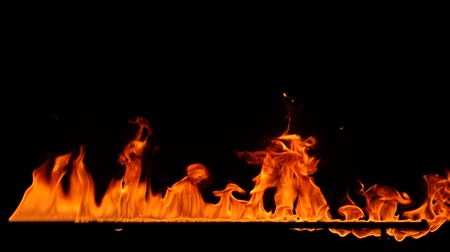 kemping : Close-up of burning fire, flames burning on black background, slow motion