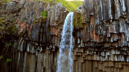 epik : Svartifoss waterfall. Skaftafell National Park, Vatnajokull glacier, Iceland, Europe. Stok Video