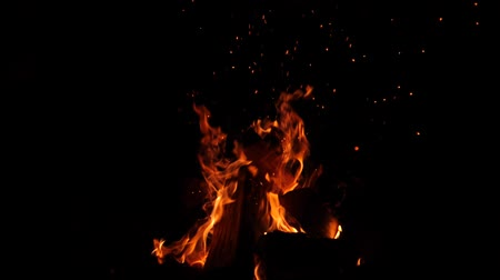 drewno : Close-up of burning fire, flames burning on black background Wideo