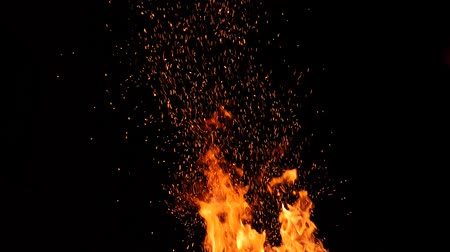 ontvlambaar : Close-up of burning fire, flames burning on black background Stockvideo