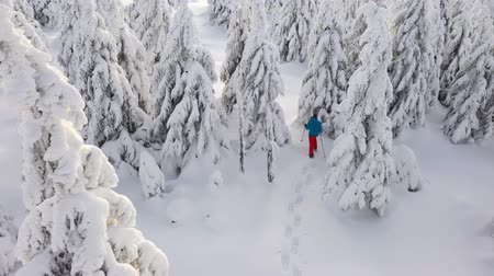 raquettes à neige : Aerial view of man walking with snowshoes on white snow in winter. Vidéos Libres De Droits