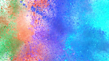 вспышка : Colorful powder exploding on white background in super slow motion.