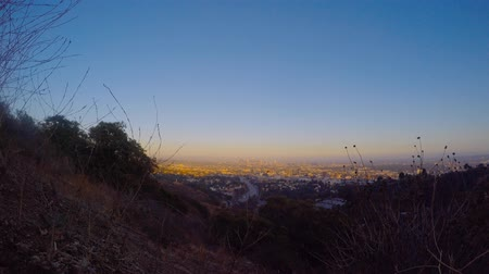 кустарник : Timelapse of Downtown Los Angeles at Sunset 4K