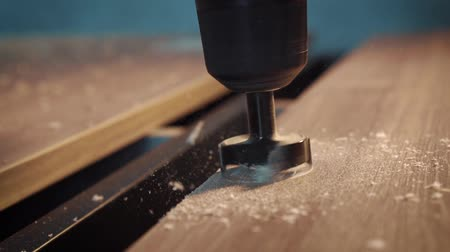 carpintaria : Drilling hole in the tree cutter. Slow motion shooting. Production of furniture