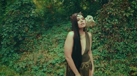 A forest nymph with long dark hair walks with a white owl. A girl in green dress with a deep neckline and bare legs.