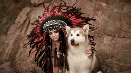 native american culture : wolf and its host (Alaskan Malamute) Stock Footage