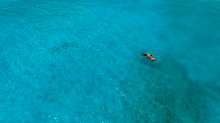 people relaxing snorkeling on sea beach Stock mozgókép