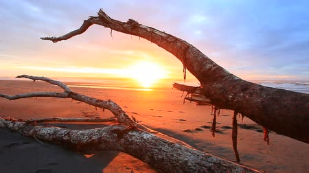 beautiful sunset sky at hokitika beach south island new zealand 影像素材