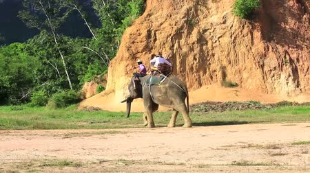 fil : Tourists riding elephant  in Krabi, Thailand