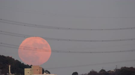 Tokyo,Japan-November 12, 2019: Rising full moon observed from the suburb of Tokyo, Japan