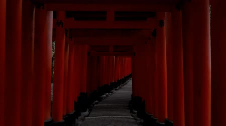 Kyoto,Japan-February 25, 2020: Walking through vermilion torii gates at Fushimi Inari Shrine in Kyoto at the Dawn