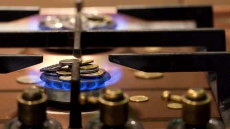 gas burner flame : Money burn in the blue. How much is gas. Gas tariffs