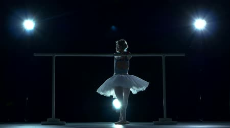 balerína : classic ballet dancer in white tutu posing on one leg at ballet barre on a blue background, silhouette Dostupné videozáznamy