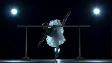 balerína : Beautiful female ballet dancer on a blue background. Ballerina is wearing  tutu and pointe shoes. Silhouette