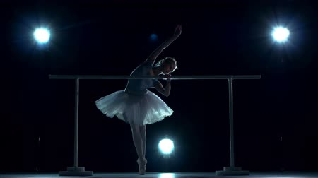 bale : Young ballerina standing near barre. beautiful female ballet dancer. Silhouette