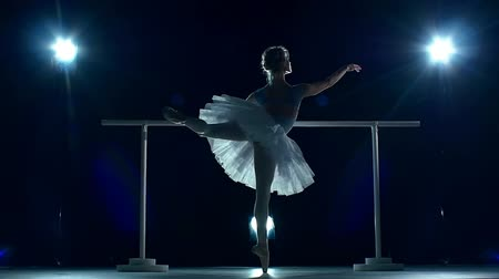 balerína : Beautiful female ballet dancer on a blue background. Ballerina is wearing  tutu and pointe shoes. Silhouette. slow motion Dostupné videozáznamy