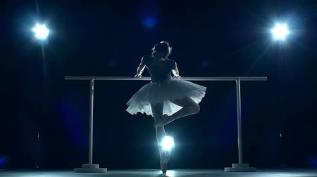 bale : Beautiful female ballet dancer on a blue background. Ballerina is wearing  tutu and pointe shoes. Silhouette. slow motion Stok Video